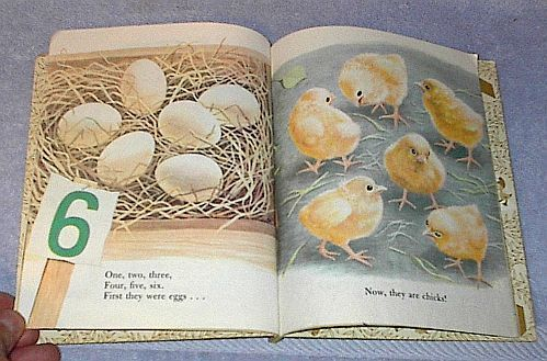 My First Counting Book 434 Old Vintage Little Golden Book