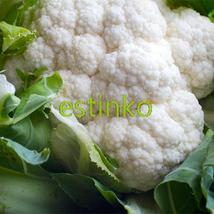 100pcs White Cauliflower Seeds NON-GMO Vegetable Seeds Home Garden Potted Plant - $7.55