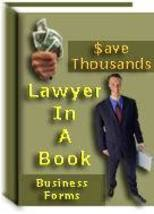 Lawyer In A Book - 100 Real Estate & Business F... - $1.99