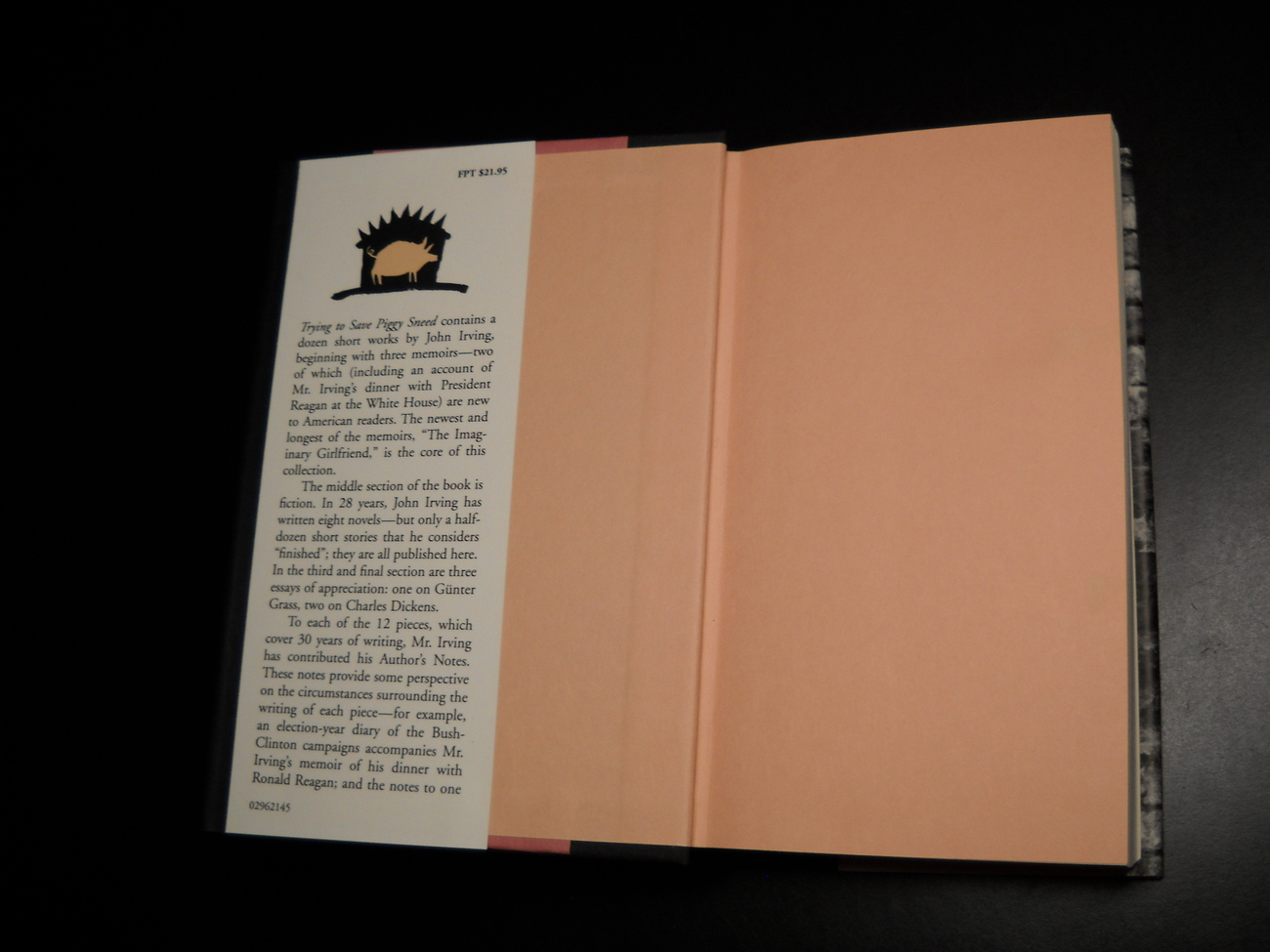 John Irving Trying To Save Piggy Sneed 1996 Arcade First US Edition HCDJ