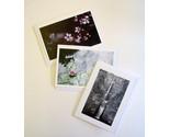 3 notecards thumb155 crop