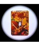 Scenic Fall Metal Light Switch Plate  - $9.50