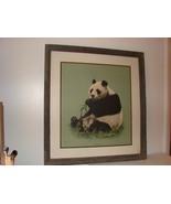 Charles Frace- Signed  Giant Panda - $500.00