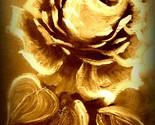 100 2319 single rose sepia thumb155 crop