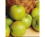 Green apple thumb155 crop