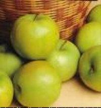 Green apple thumb200
