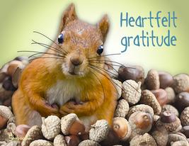 Unique Thank You Card: Pile Of Gratitude - $5.00
