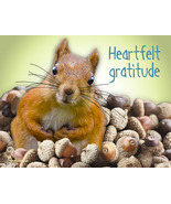Unique Thank You Card: Pile Of Gratitude - $4.25