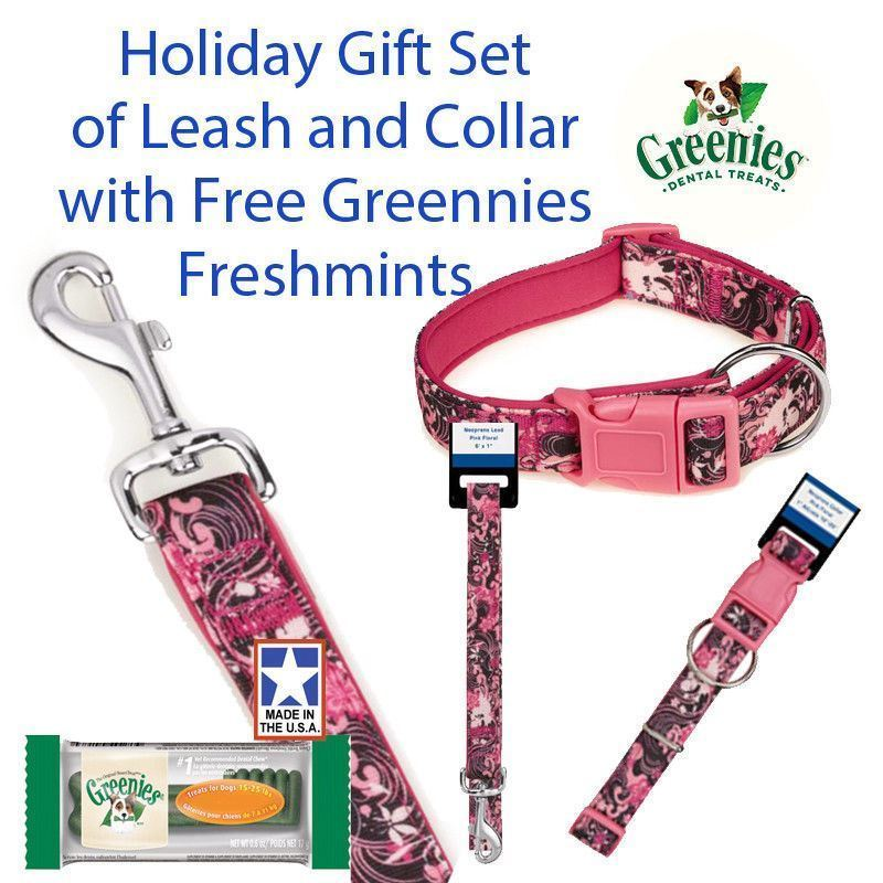 "Small Dog Pink Floral 4 Ft Lead 3/8"" 6-10"" Collar Gift Set & Free Greenies"