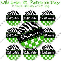 Editable - Wild Irish St. Patrick's Day Zebra ... - $3.00