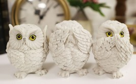 See Hear Speak No Evil Fat White Baby Owls Figurine Set Of 3 Chibi Owlet... - $22.99