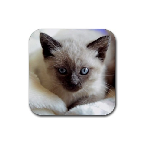 Siamese kitty kitten cat cats rubber coaster  square