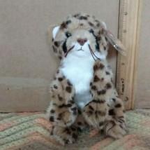 Ty Beanie Baby - CHITRAKA the Cheetah (6 Inch)(Internet Exclusive) MWMT - $34.99