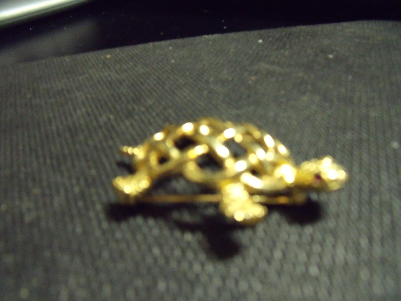 Napier Golden Turtle with Open Weave Shell