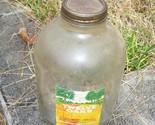 Jars 002 1 thumb155 crop