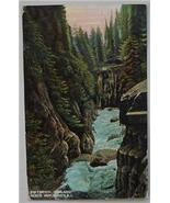 1911 PC, 2nd Canyon, Capilano, North Vancouver, B.C. - $3.95