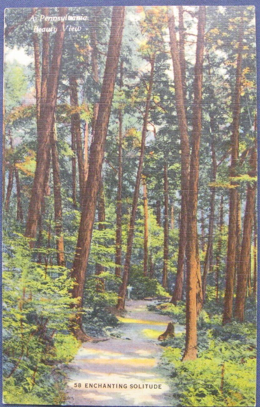Penn forest road 1 1