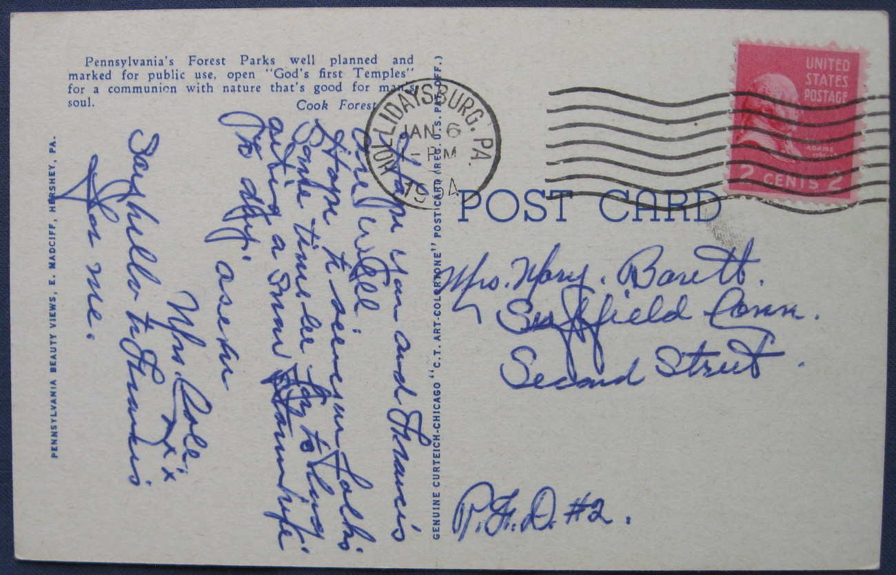 Curteich, Full Bleed, Linen Postcard,  58 Enchanting Solitude, Pennsylvania Beau
