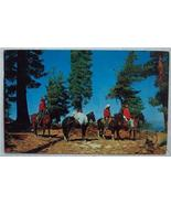 1950's Post Card Horse Back Riders Out West - $3.00