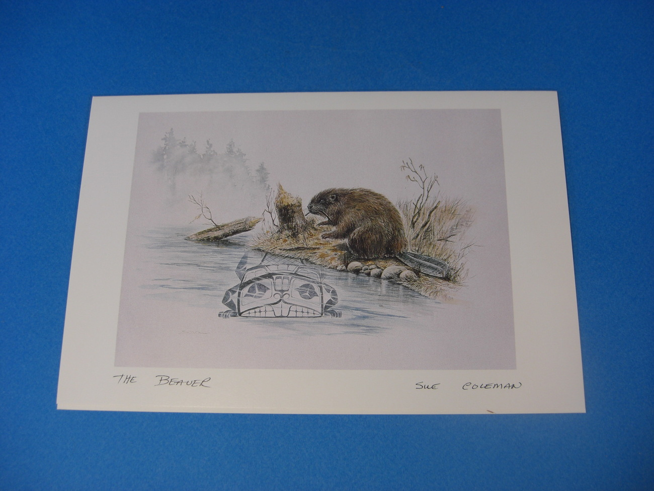 THE BEAVER Art Card by Susan Coleman