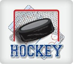 Hockey Puck Edible Image Cake Topper - $12.00