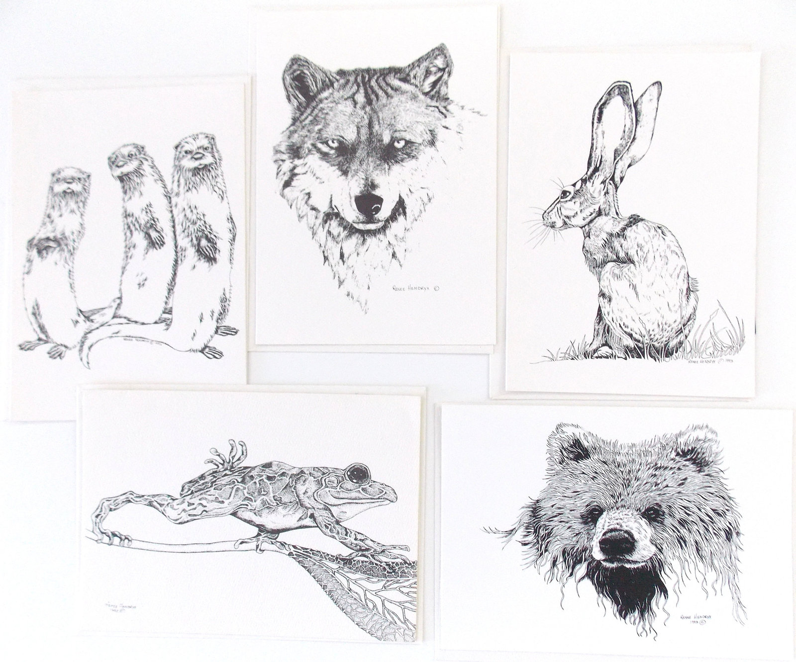 Grizzled Old Wolf, Framed Matted Wildlife Art Print, Pen and Ink, Animal Art Dra