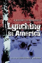 """""""GOOD COND"""" LYNCHING IN AMERICA A HISTORY IN DOCUMENTS (2006) - $18.55"""