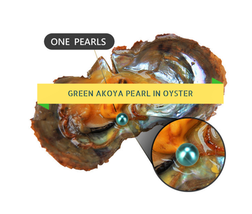 GREEN COLOR  Round Akoya Pearl In Oyster Vacuum Packed 6-7m  20pcs Freeship - $55.74