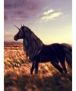 Dark Unicorn Essence Spell ~ All of the Blessings of the Dark Unicorn - $39.99