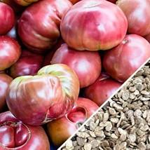 100 seeds Purple Calabash Tomato Seeds - $13.00