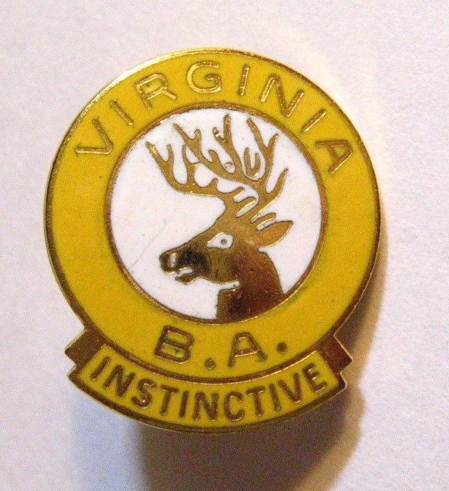 VA Elks Club Lapel Pin - Vintage Virginia Benevolent Protective Order Lodge USA