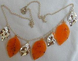 Orange morano leaves b thumb200