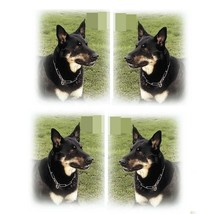 HERM SPRENGER Fur Saver Dog Collar - all sizes - German steel - highest ... - $16.51+