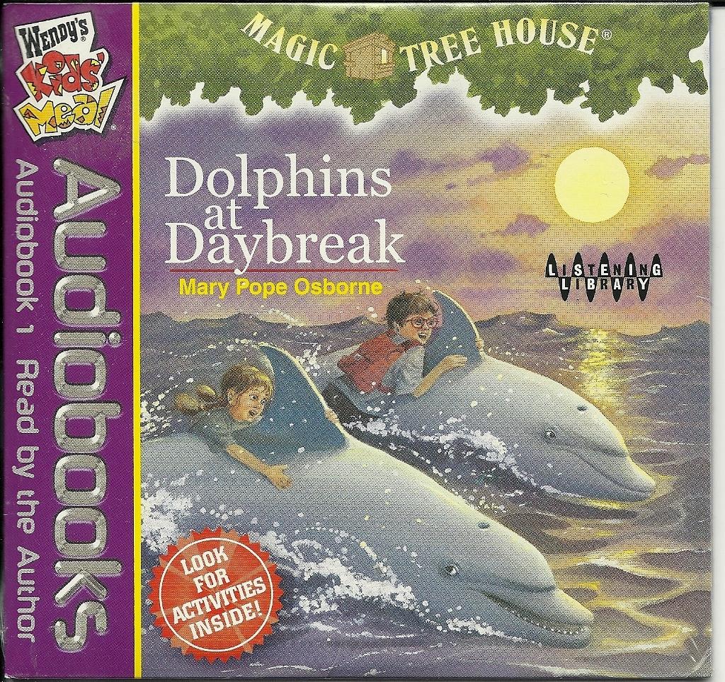 Dolphins daybreak  1024x964