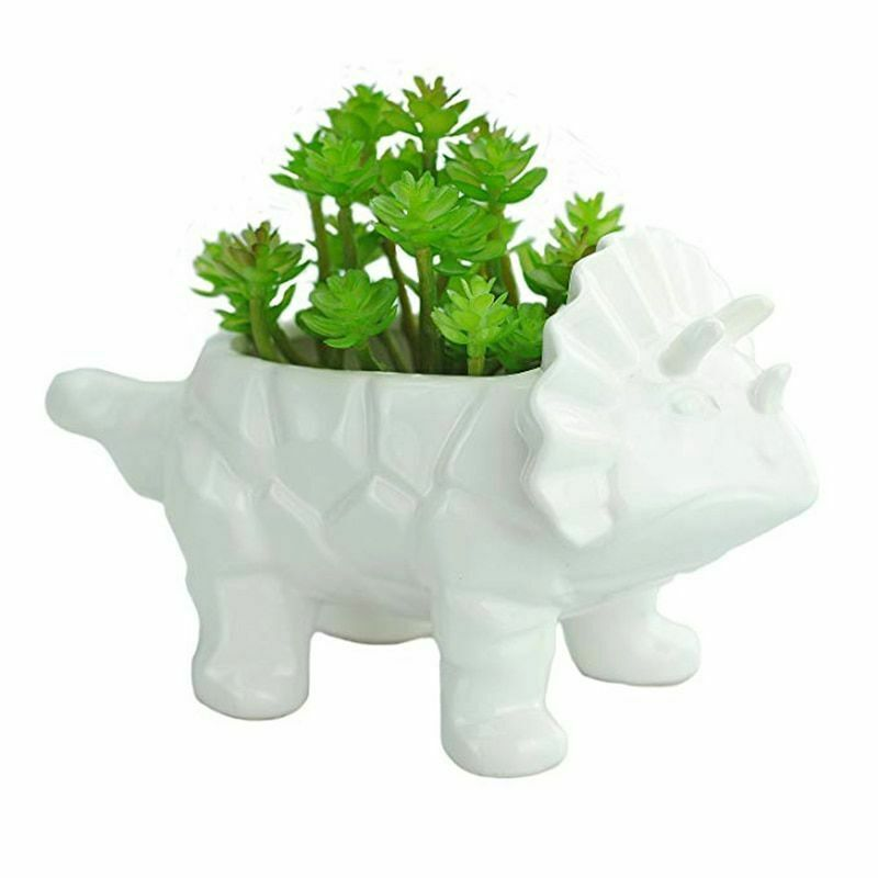 Primary image for Dinosaur Ceramic Succulent Planter Triceratops Cactus Drainage Hole Flower Pot