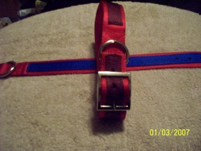 1.5 Webbing Collar Multi Ply Bull Dog Tough USA MADE