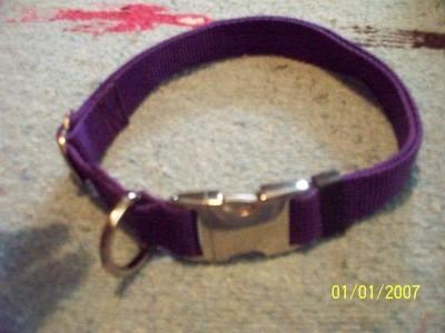 Adjustable Dog Collar 1 Webbing Free Pet ID Tag Metal