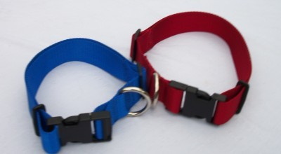 Dog Collar 1'' Webbing Adjustable USA Free Pet ID Tag