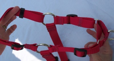 Large Easy Walk Dog Harness Free Pet ID Tag