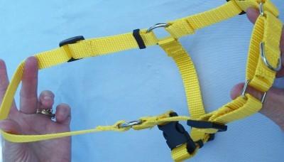 Medium  Easy Walk Dog Harness Free Pet ID Tag