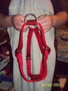 Super Heavy 4 Way Adjustable Dog Harness Small
