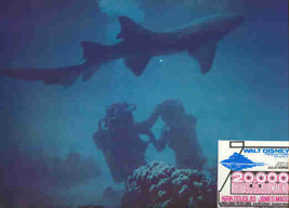 Disney -  20,000 - Leagues Under the Sea - 2 Divers -  Lobby Card - $23.93