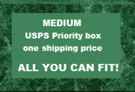 ALL YOU CAN FIT - MEDIUM USPS PRIORITY FIXED RATE BOX - $0.00