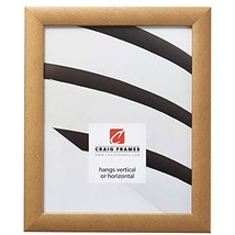 Craig Frames Contemporary Picture Frame 9 x 11 Inch Distressed Gold - $41.92
