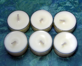 Bird of Paradise PURE SOY Tea Lights (Set of 6) - $5.00