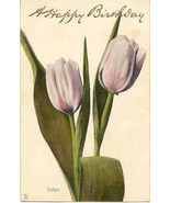Birthday Tulips Tuck and Son Vintage Post Card - $3.00