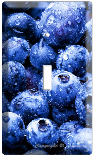 BLUEBERRY KITCHEN DECOR LIGHT SWITCH OUTLET COVER PLATE