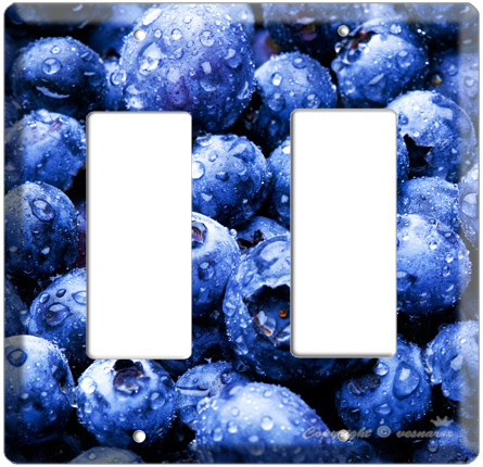 Http Www Bonanza Com Listings Blueberry Kitchen Decor Light Switch Outlet Cover Plate 29341041