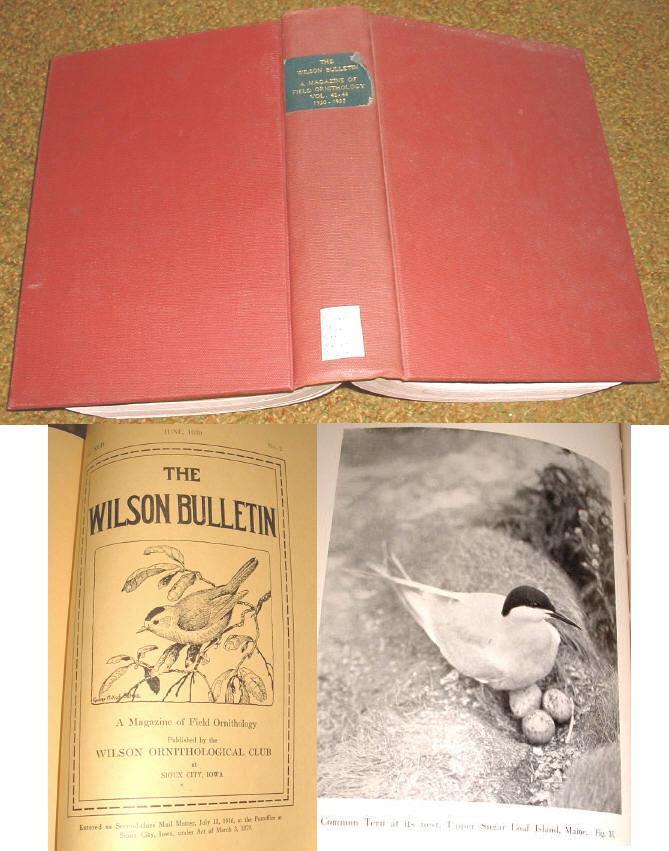 Wilson bull v42 44