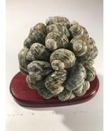 Natural Snail Shell Globe Ball Cluster Sculpture Beach House Cabin Art D... - $32.62